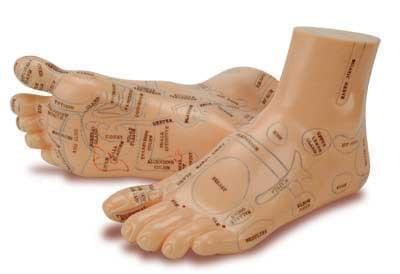 Réflexologie pied